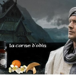 La Corne d'Odin 10ml Le Viking Celte